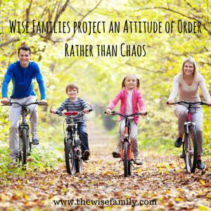 Wise Families nurture positive (1)